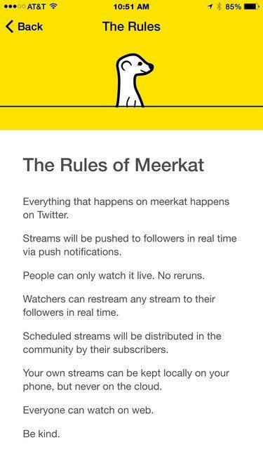 Meerkat_Rules_DYC